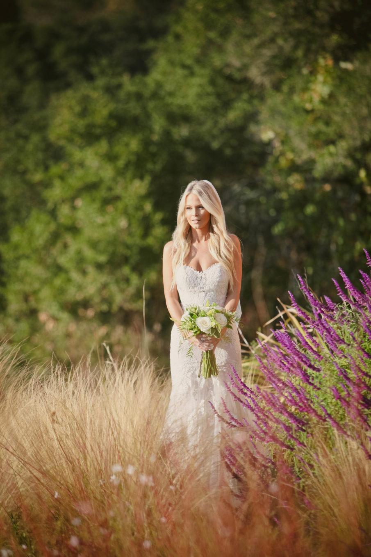 harrison sapp white, stella york, bride